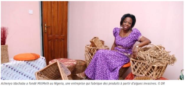 Achenyo Idachaba a fondé MitiMeth au Nigéria, une entreprise qui fabrique des produits à partir d'algues invasives.